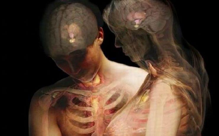 Le curiosità scientifiche più bizzarre sul corpo umano CHE NON SAPEVI! LEGGILE TUTTE...