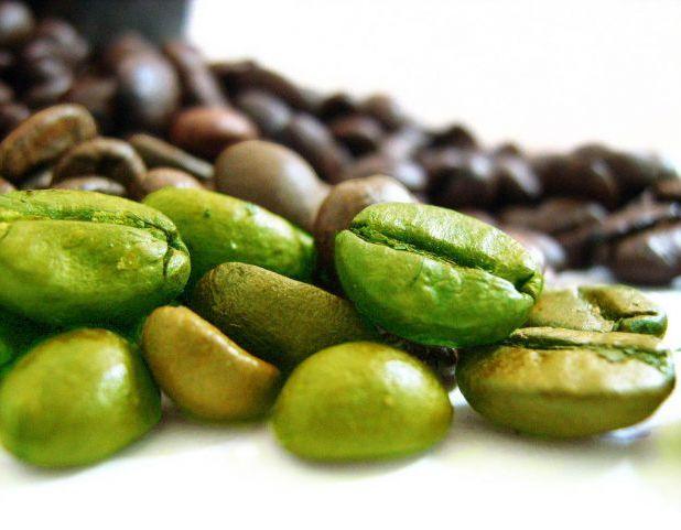 Tutti i benefici del Caffè Verde. La ricetta naturale per il benessere del corpo