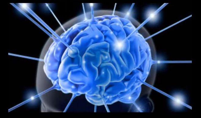 Ecco come il cervello influenza la realtà di tutti i giorni grazie al campo di energia quantico che emette