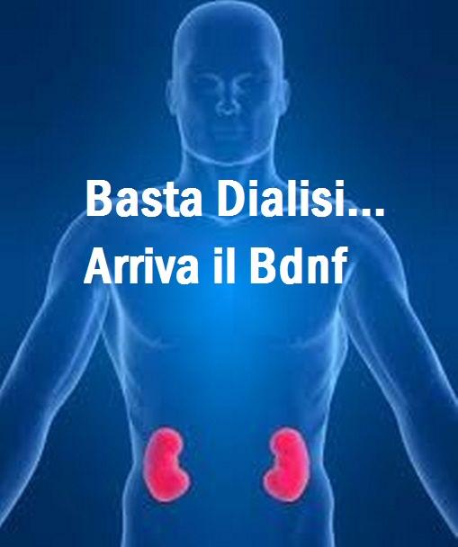 Dialisi addio... Ecco la nuova frontiera del Bdnf: sostanza che ripara i danni Renali! Ecco cos'è