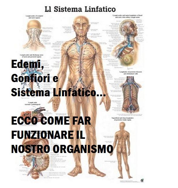 Edema,Gonfiore e Sistema linfatico sono alla base della salute!Ecco come ripulire il corpo per farlo funzionare!