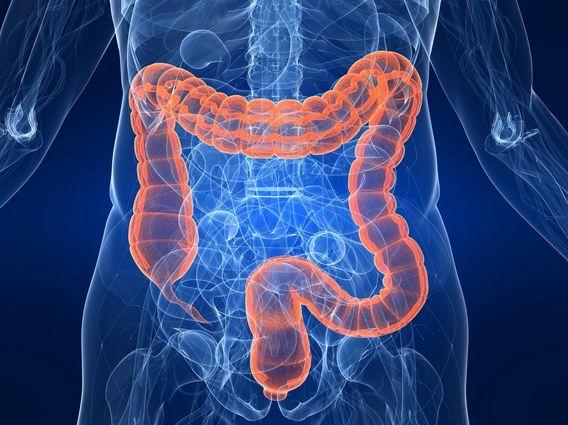 Ecco perché è importante disintossicare l' intestino in modo naturale. Scopri come...IL VIDEO