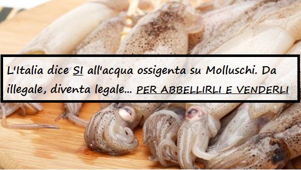 """Il Ministero della Salute approva l'acqua ossigenata per """"abbellire"""" i molluschi venduti! E' bufera. Leggi"""