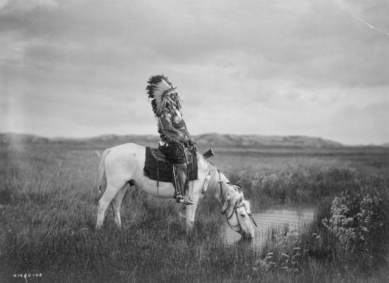 Camminerò: il canto dei Navajo. La poesia degli Indiani d'America