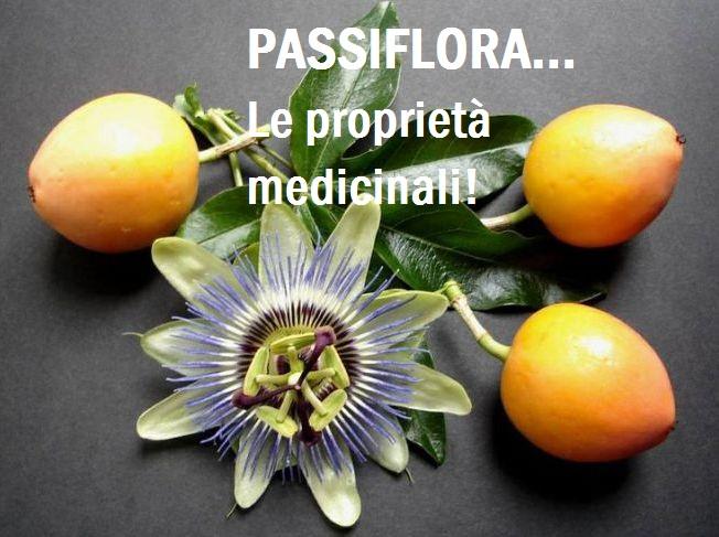 Passiflora... La pianta dalle molteplici proprietà Medicinali! Scopri tutti i suoi usi e benefici!