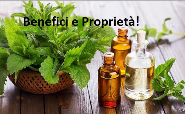 La Pianta della salute! Capace di curare Cefalee, Antibatterico, Analgesico MA NON SOLO! SCOPRILA