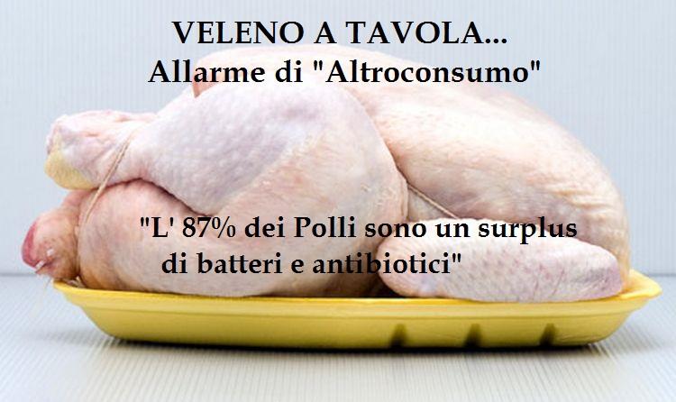 Allarme di Altroconsumo:Batteri resistenti agli antibiotici nella carne di pollo