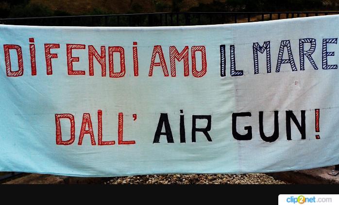 Air gun: I cannoni ad aria compressa che distruggono i nostri mari
