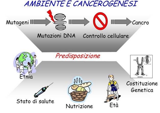 Si ammala di cancro soprattutto chi è predisposto.Ecco i fattori che ci rendono predisposti