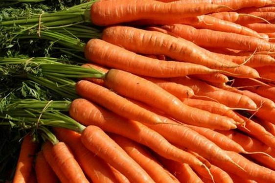 Le proprietà salutistiche che apportano benefici alla salute delle carote,grazie al beta-carotene
