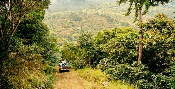 Grande vittoria dei contadini di El Salvador!Cacciano la Monsanto rifiutando gli Ogm,e utilizzano i loro semi