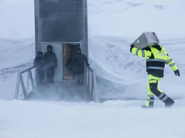 Svalbard: Alla scoperta del bunker dell'Artico che custodisce tutte le specie di semi del mondo. IL VIDEO