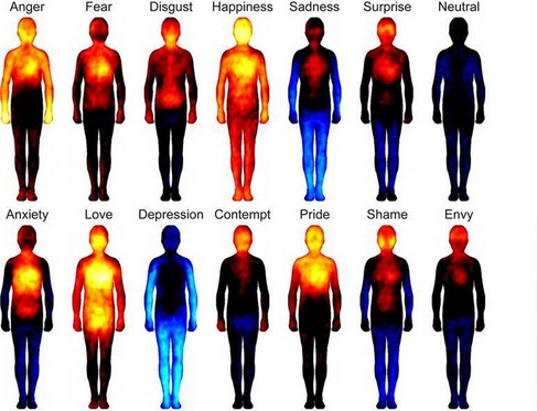 Ogni emozione influisce sul nostro organismo determinandone lo stato di salute. Ecco come