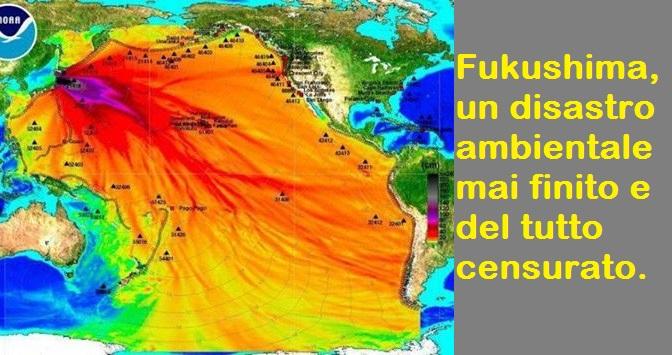 Fukushima: il disastro ambientale di cui nessuno sta parlando.