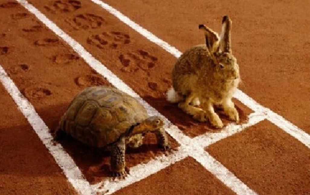L'importanza della lentezza.Se siamo troppo veloci il cervello non funziona bene