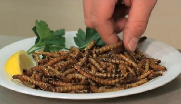 Dicono che la carne rossa è cancerogena e dopo pubblicizzano gli insetti a tavola.Una strategia?