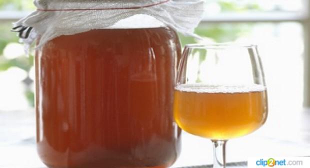 Alla scoperta del Kombucha, il tè elisir di lunga vita