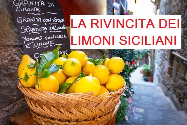 La rivincita dei limoni siciliani: A Palermo ora costano 1 € al Kg