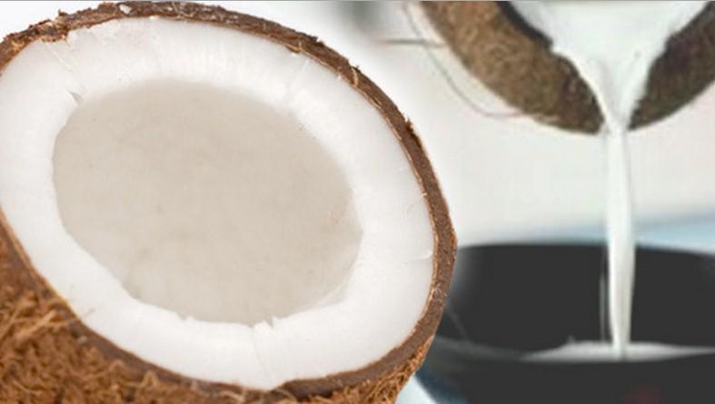 Ecco tutti i benefici del latte di cocco,e tutti i motivi per berlo ogni giorno