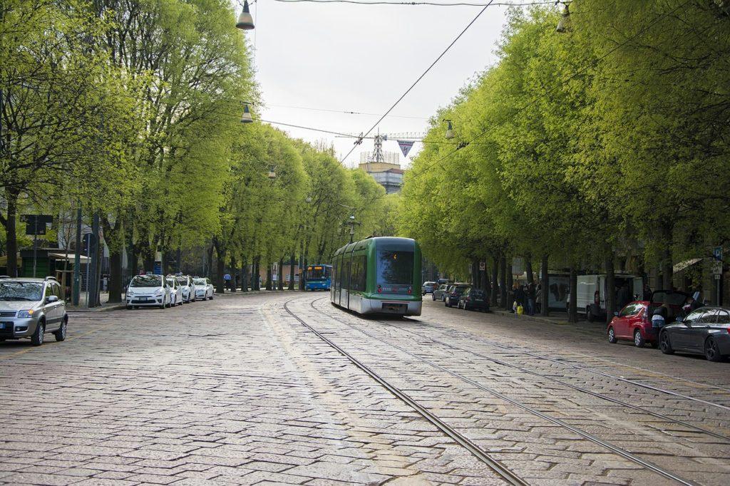 legge n°113 del 29 gennaio 1992 obbliga di piantare una albero in città per ogni nascituro - Milano