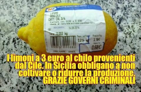 Limoni importati dal Cile e agricoltori siciliani che falliscono