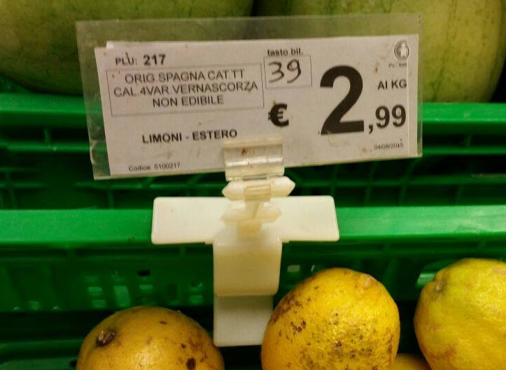 ASSURDO!I limoni siciliani sono praticamente spariti dai supermercati. Ecco perchè