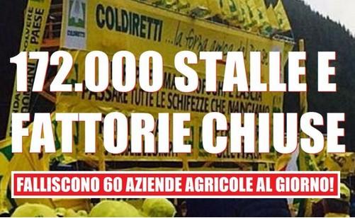 """Alimentazione:Anche se leggi""""Made in Italy"""" è un falso creato dalla UE.E intanto chiudono 60 stalle al giorno"""