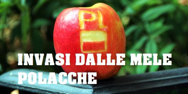 Le mele polacche invadono l'Italia. Occhio alla buccia