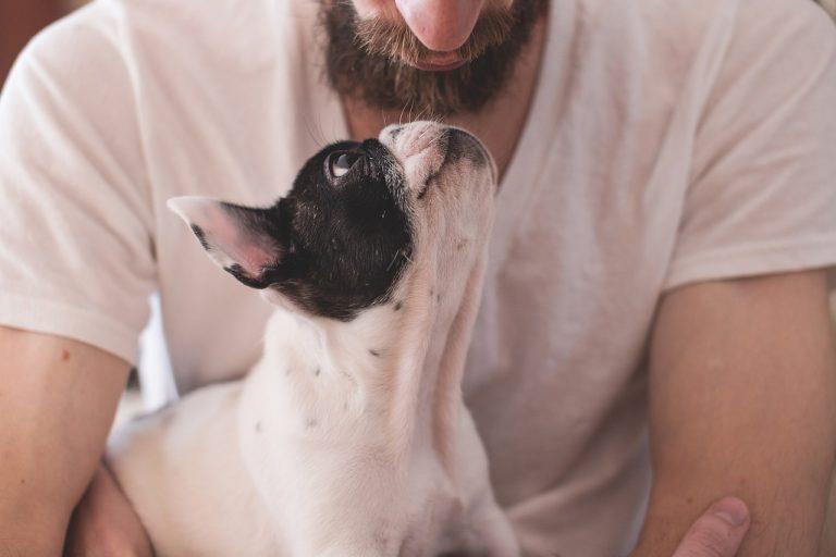Parlare con gli animali domestici non è pazzia, ma sintomo di intelligenza