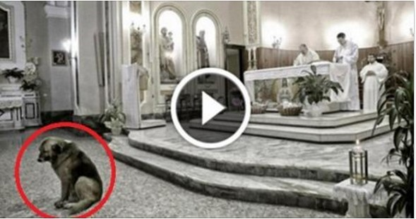 Andava in chiesa tutti i santi giorni. Il motivo fa venire le lacrime.... IL BELLISSIMO VIDEO