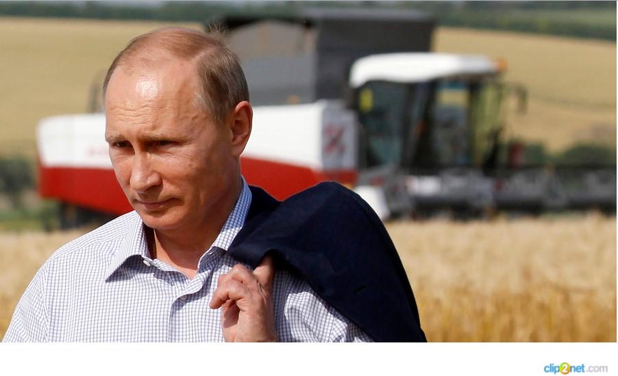 La Russia sarà il primo produttore mondiale di alimenti non OGM e biologici. Lo vuole Putin...