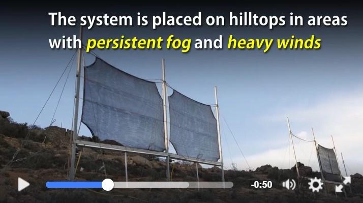 Questa struttura cattura la nebbia e la trasforma in acqua dolce.Vedere per credere.IL VIDEO