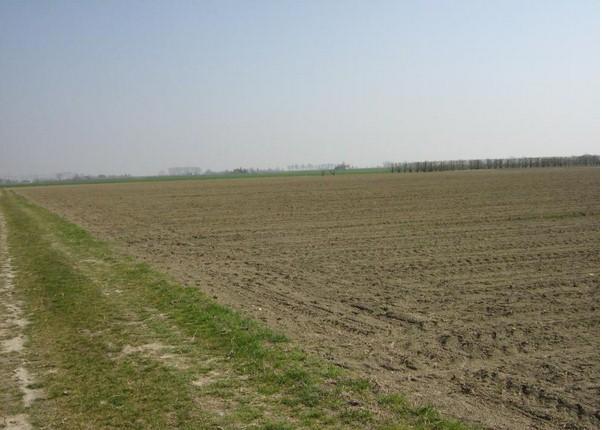 Dove prima c'era l'abbondanza oggi non cresce nulla!Sempre più terreni agricoli improduttivi.Ecco perchè