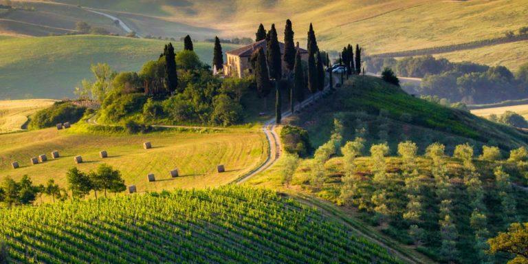 Dopo la Calabria arriva la Toscana a bandire il Glifosato, sotto a chi tocca!