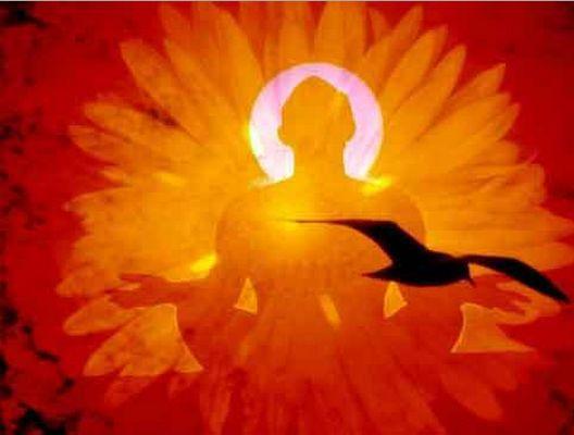 8 settimane di meditazione sono in grado di plasmare un vostro nuovo IO! LEGGI