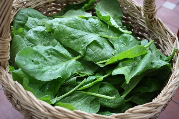 La verdura previene le malattie croniche.La classifica delle migliori verdure