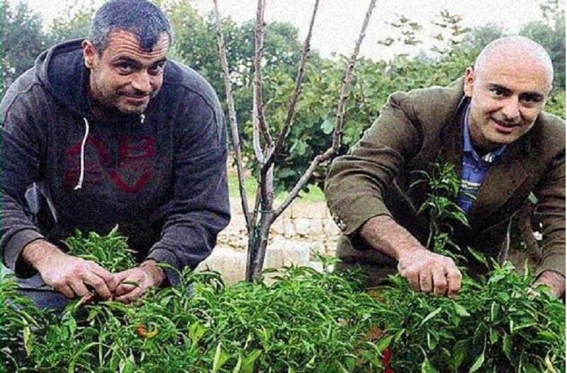 Due ragazzi stanno creando un archivio di semi antichi per combattere le multinazionali