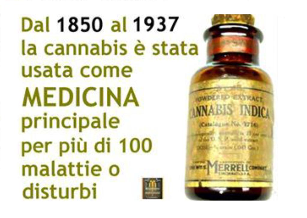 la cannabis veniva usata come medicina per molte malattie