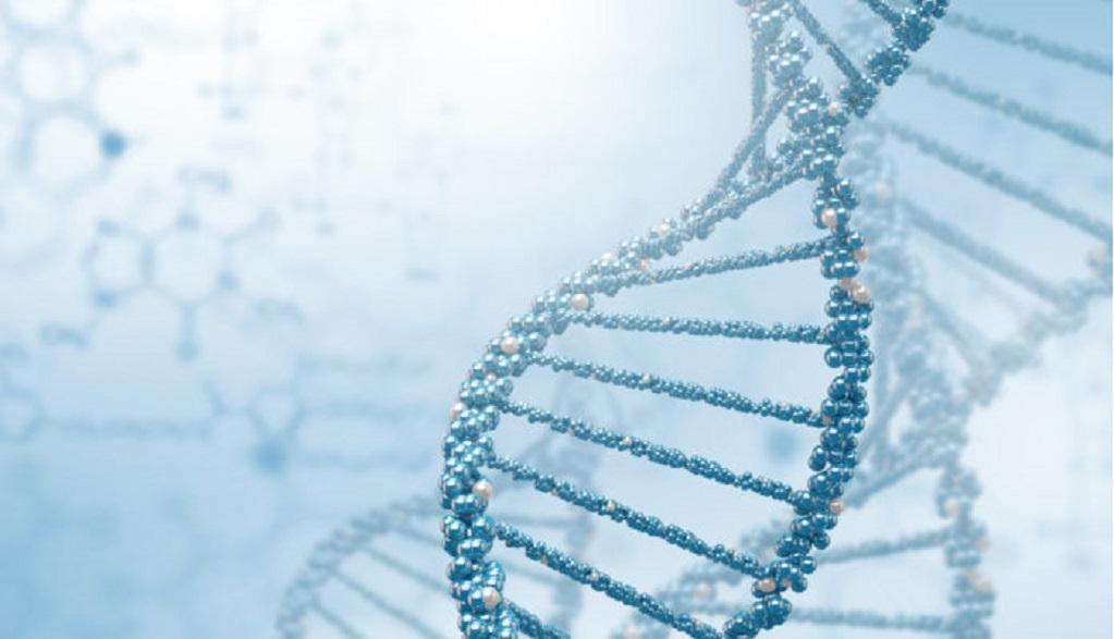 Bioetica e vita, la scienza della sopravvivenza fra laicità e religione