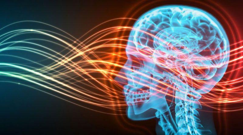 come proteggersi dalle onde elettromagnetiche 2