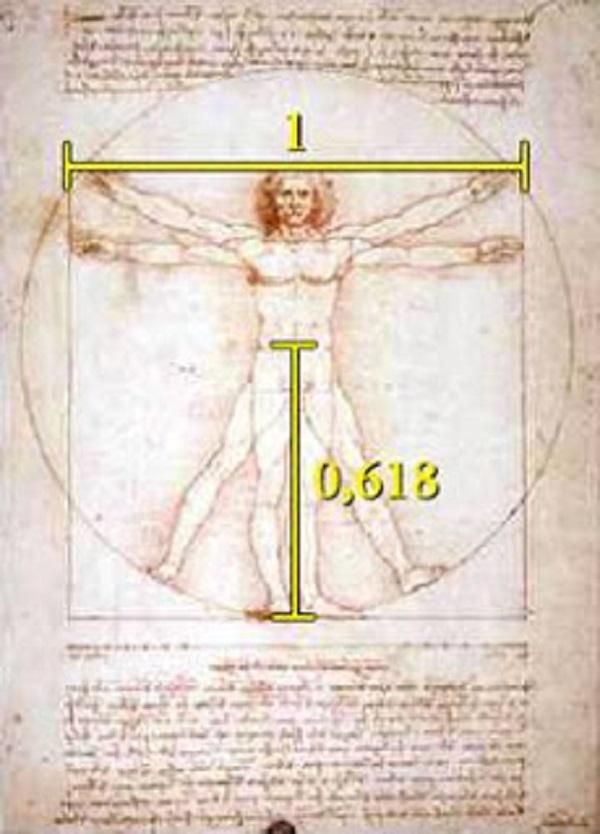 fibonacci leonardo