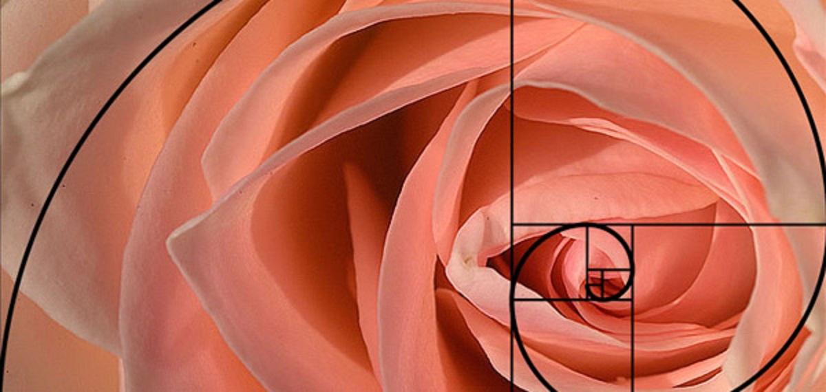 fibonacci sezione aurea spirale