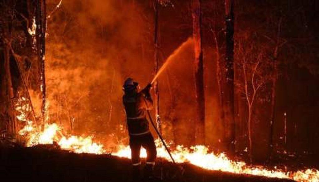 incendi dolosi Australia