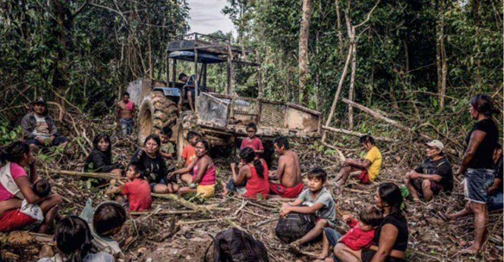 governo brasile devasta amazzonia-coronavirus