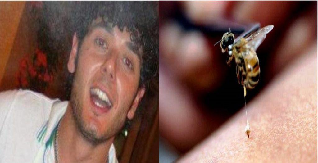 Lorenzo Di Grigoli morto puntura d'ape Cammarata