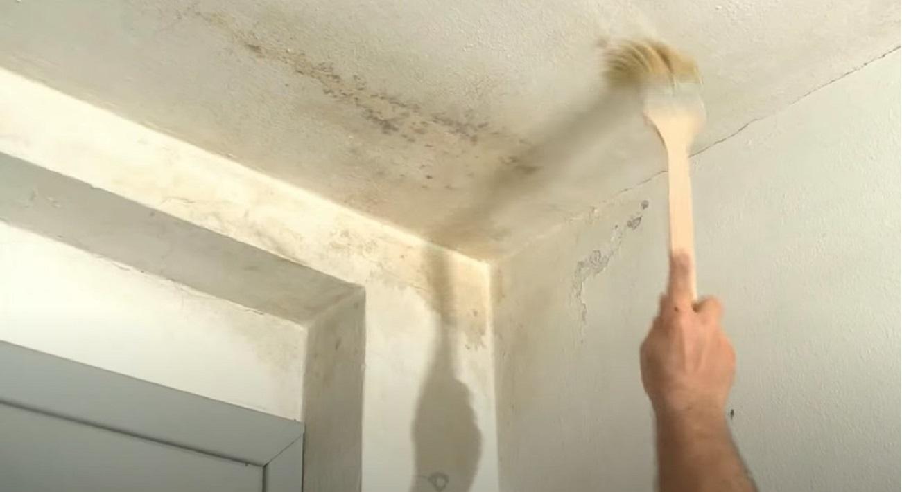 umidità in casa rimedio naturale