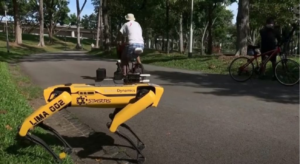 Cane robot per distanziamento sociale Singapore