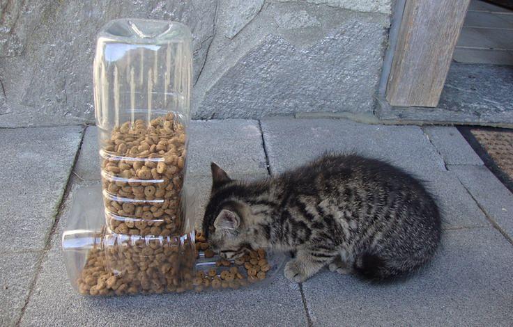 Mangiatoia per cani e gatti fai da te con bottiglie di plastica